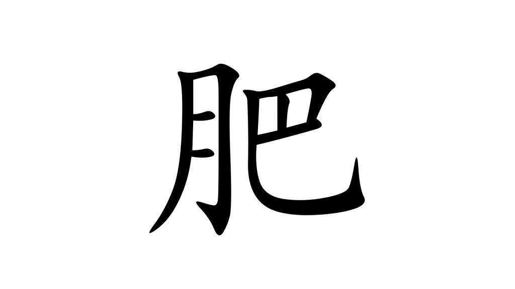 הסימנית 肥 - תמונת שער